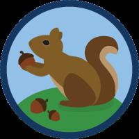 Caching In The Salesforce Platform - RapidAPI